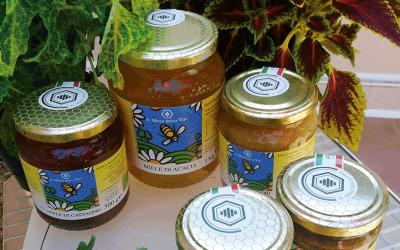 Il miele biologico